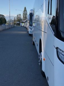 Gold Coast Coachlines buses lined up ready for school tour